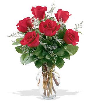 Şanlıurfa ucuz çiçek gönder  cam yada mika vazoda 6 adet kirmizi gül