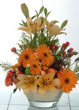 Şanlıurfa internetten çiçek siparişi  cam yada mika vazo içinde karisik mevsim çiçekleri