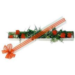 Şanlıurfa İnternetten çiçek siparişi  6 adet kirmizi gül kutu içerisinde