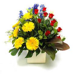 Şanlıurfa çiçek satışı  9 adet gül ve kir çiçekleri cam yada mika vazoda