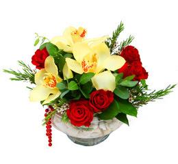 Şanlıurfa çiçek servisi , çiçekçi adresleri  1 kandil kazablanka ve 5 adet kirmizi gül
