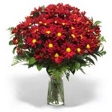 Şanlıurfa çiçek online çiçek siparişi  Kir çiçekleri cam yada mika vazo içinde
