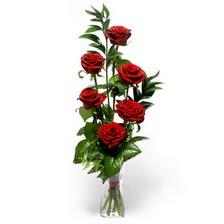 Şanlıurfa hediye çiçek yolla  mika yada cam vazoda 6 adet essiz gül