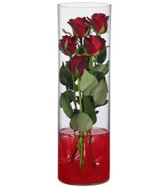 cam içerisinde 7 adet kirmizi gül  Şanlıurfa çiçek yolla