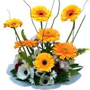 camda gerbera ve mis kokulu kir çiçekleri  Şanlıurfa çiçek mağazası , çiçekçi adresleri