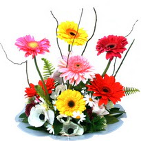 Şanlıurfa online çiçekçi , çiçek siparişi  camda gerbera ve mis kokulu kir çiçekleri
