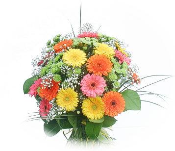 13 adet gerbera çiçegi buketi  Şanlıurfa çiçek satışı