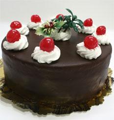 4 ile 6 kisilik yas pasta çikolatali taze pastaci  Şanlıurfa çiçek siparişi sitesi