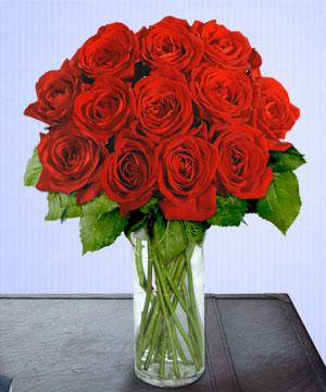 Anneme 12 adet cam içerisinde kirmizi gül  Şanlıurfa İnternetten çiçek siparişi