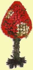 Şanlıurfa çiçek servisi , çiçekçi adresleri  dügün açilis çiçekleri  Şanlıurfa çiçekçiler