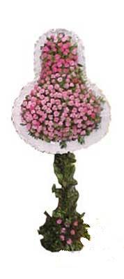 Şanlıurfa yurtiçi ve yurtdışı çiçek siparişi  dügün açilis çiçekleri  Şanlıurfa çiçek gönderme