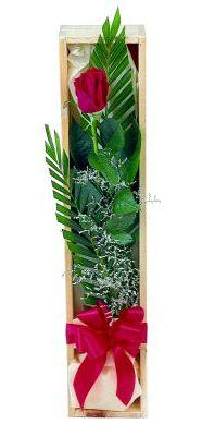 1 adet kutuda kirmizi gül  Şanlıurfa hediye sevgilime hediye çiçek