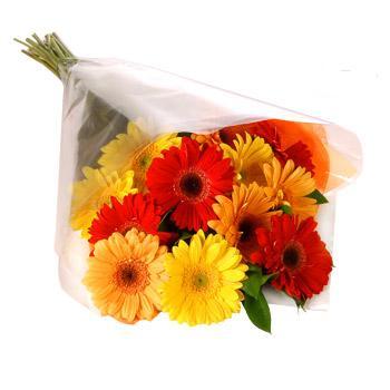 Karisik renklerde gerbera buketi  Şanlıurfa ucuz çiçek gönder