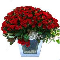 Şanlıurfa çiçek yolla   101 adet kirmizi gül aranjmani