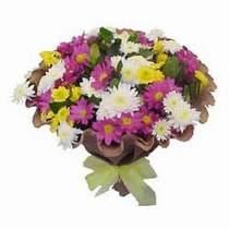Şanlıurfa çiçek mağazası , çiçekçi adresleri  Mevsim kir çiçegi demeti