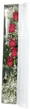 Şanlıurfa İnternetten çiçek siparişi   5 adet gülden kutu güller