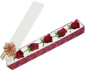 Şanlıurfa çiçek gönderme sitemiz güvenlidir  kutu içerisinde 5 adet kirmizi gül