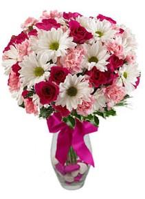 Şanlıurfa İnternetten çiçek siparişi  Karisik mevsim kir çiçegi vazosu