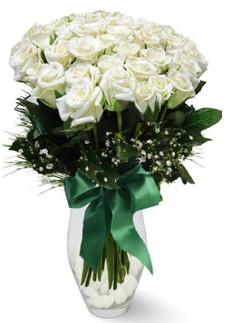 19 adet essiz kalitede beyaz gül  Şanlıurfa çiçek yolla