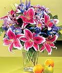 Şanlıurfa çiçek siparişi vermek  Sevgi bahçesi Özel  bir tercih