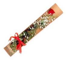 1 adet kirmizi gül  Şanlıurfa çiçek mağazası , çiçekçi adresleri