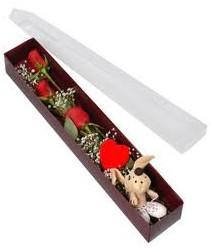 kutu içerisinde 3 adet gül ve oyuncak  Şanlıurfa ucuz çiçek gönder