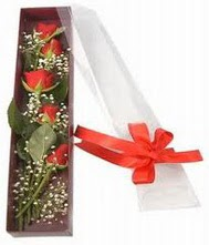 kutu içinde 5 adet kirmizi gül  Şanlıurfa çiçek gönderme