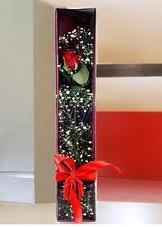 kutu içinde tek kirmizi gül  Şanlıurfa çiçekçiler