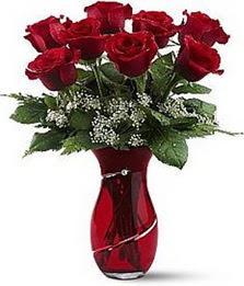 Vazo içinde 8 adet kirmizilar içinde güller  Şanlıurfa çiçek gönderme