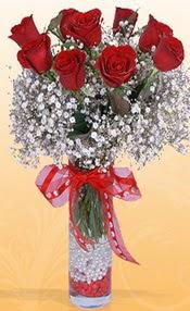 9 adet kirmizi gül cam yada mika vazoda  Şanlıurfa çiçek siparişi vermek