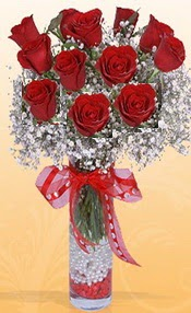 10 adet kirmizi gülden vazo tanzimi  Şanlıurfa İnternetten çiçek siparişi