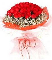 Şanlıurfa internetten çiçek satışı  21 adet askin kirmizi gül buketi