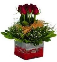 Şanlıurfa çiçek servisi , çiçekçi adresleri  7 adet mika yada cam vazoda gül tanzimi