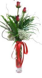 Şanlıurfa İnternetten çiçek siparişi  3 adet kirmizi gül vazo içerisinde