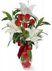 Şanlıurfa çiçekçi telefonları  5 adet kirmizi gül ve 3 kandil kazablanka