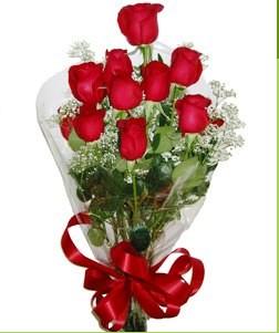 Şanlıurfa hediye çiçek yolla  10 adet kırmızı gülden görsel buket