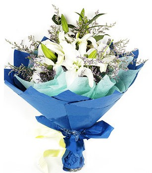 Şanlıurfa çiçek siparişi sitesi  4 adet dal kazablankadan görsel buket