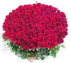 Şanlıurfa uluslararası çiçek gönderme  100 adet kırmızı gülden görsel buket