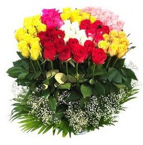 Şanlıurfa çiçek siparişi vermek  51 adet renkli güllerden aranjman tanzimi