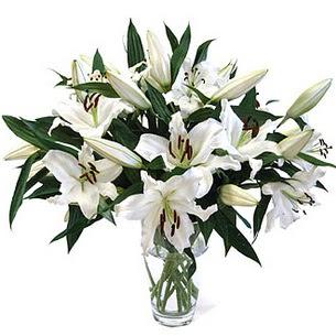 Şanlıurfa çiçek mağazası , çiçekçi adresleri  3 dal görsel casablanca vazo tanzimi