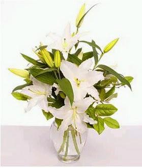 Şanlıurfa çiçek servisi , çiçekçi adresleri  2 dal cazablanca vazo çiçeği