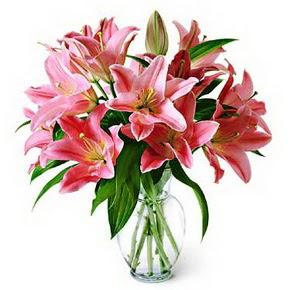 3 dal kazablanka görsel vazosu  Şanlıurfa çiçek gönderme
