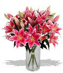 4 dal cazablanca görsel vazosu  Şanlıurfa çiçek yolla , çiçek gönder , çiçekçi