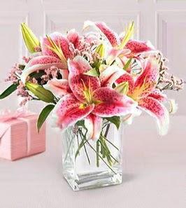 2 dal kazablanka görsel vazosu  Şanlıurfa İnternetten çiçek siparişi