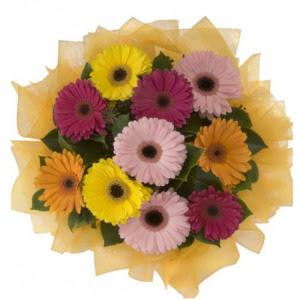 Şanlıurfa anneler günü çiçek yolla  11 adet karışık gerbera çiçeği buketi