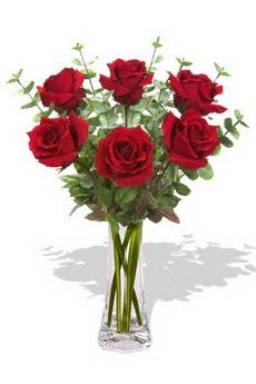 Şanlıurfa çiçek yolla , çiçek gönder , çiçekçi   6 kırmızı gül vazosu