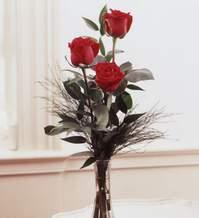 Şanlıurfa çiçek gönderme sitemiz güvenlidir  Vazoda 3 adet güzel gül