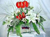 Şanlıurfa çiçek siparişi vermek  Anthurim Kazablanka  gül