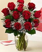 Sevgilime hediye 9 adet 1.ci kalite gül  Şanlıurfa çiçek siparişi sitesi