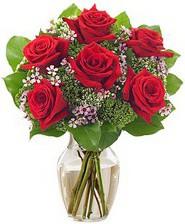 Kız arkadaşıma hediye 6 kırmızı gül  Şanlıurfa çiçek gönderme